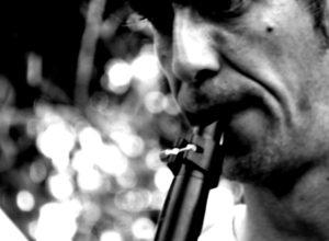 Bruissonance/ Laurent Avizou